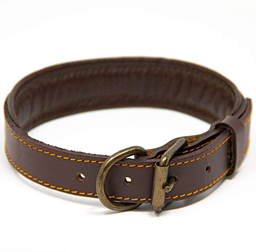 What's The Best Leather Dog Collar On The Market? (2020) 15