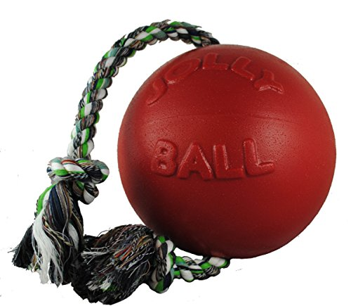 What Are The Best Dog Balls? Our In-Depth Guide 17