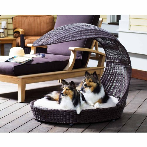 What's The Best Outdoor Dog Bed? Our Top Picks 4