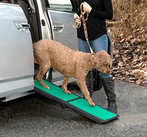 What Are The Best Dog Ramps In 2020? 6