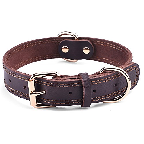 What's The Best Leather Dog Collar On The Market? (2020) 21