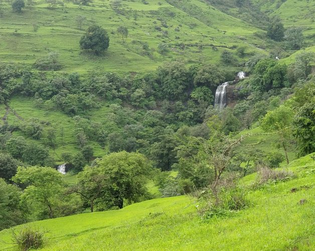 Rajgurunagar Greenary- Bhimashankar