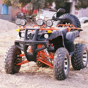 tarzan 200 bike 4 wheeler