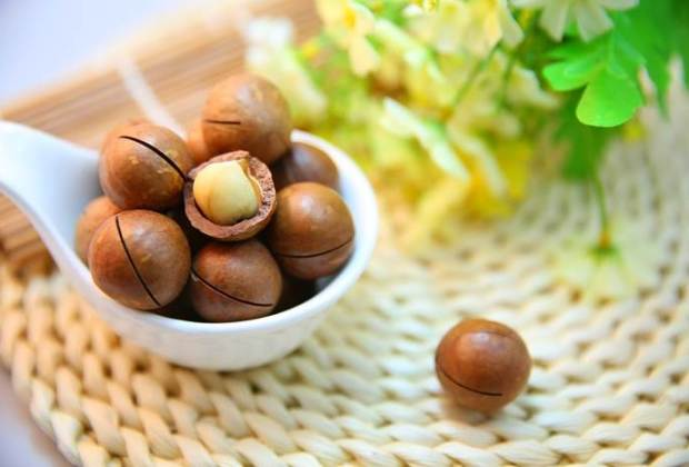 Macadamia Nuss gesund lecker