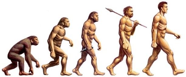 Origini dell'uomo
