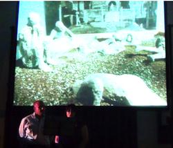 vivere e morire a Pompei - scavi 5