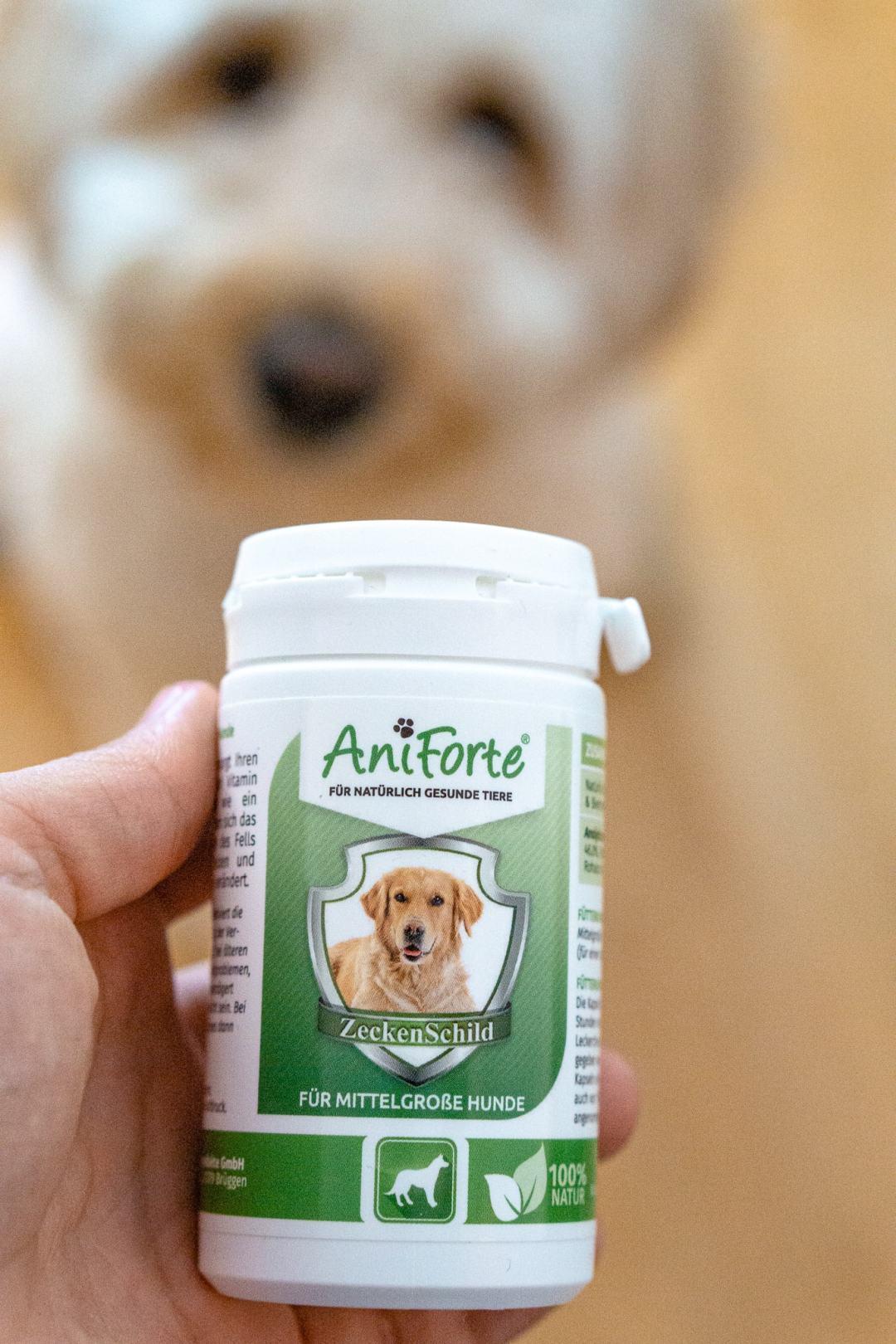 Zeckenmittel-für-Hunde-von-aniforte