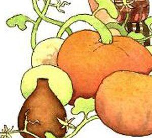 The-Pumpkin-in-a-Jar