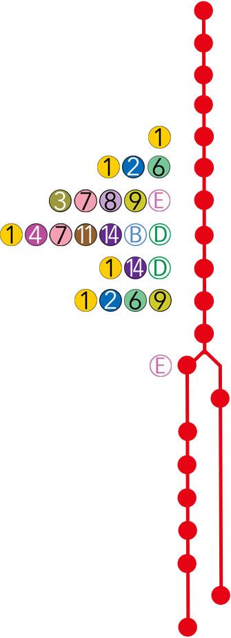 Line ANN