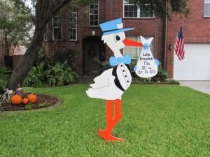 Staten Island Stork Rentals Start Your Own Stork Rental