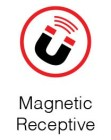 magnetic receptive
