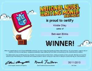 nano2013winner