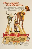 The Incredible Journey