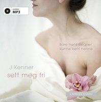 Sett meg fri - Julie Kenner