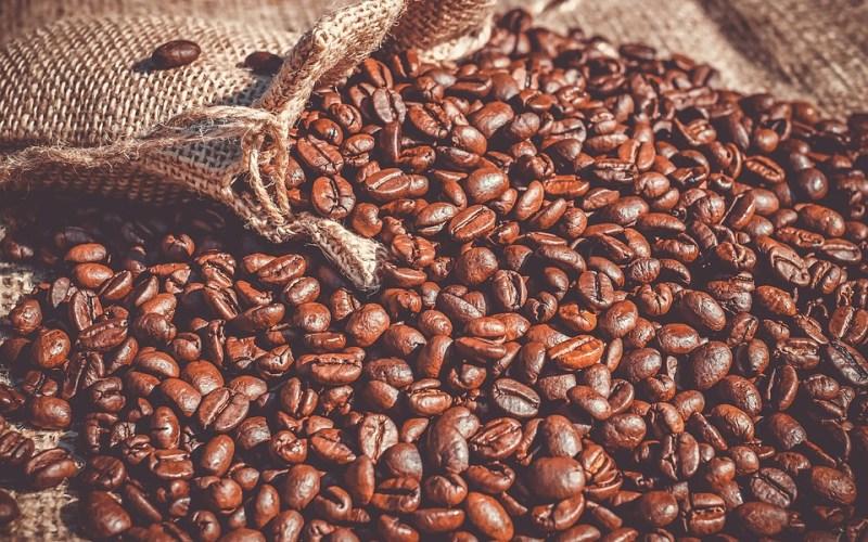 Koffiebonen: weet jij nog waar ze vandaan komen?