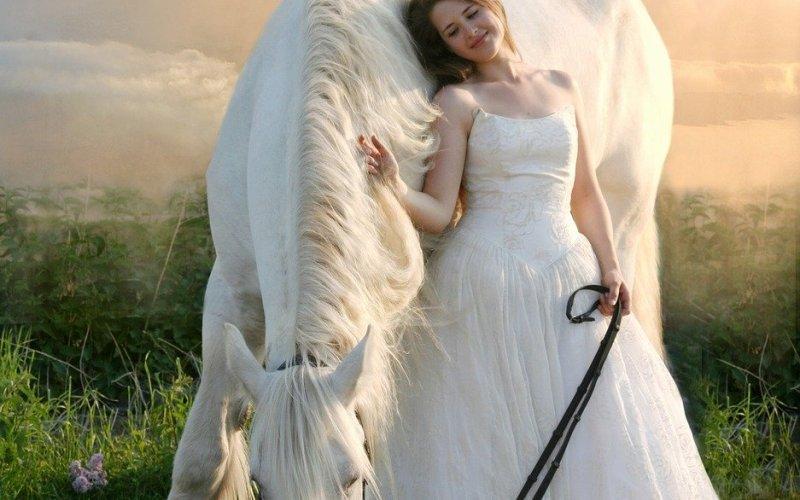 De prinses op het witte paard