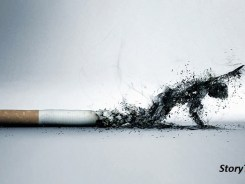 Smoking Kills!! Physically and Financially… What Category Are You?