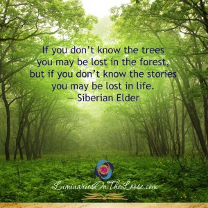 lost in the woods siberian elder