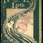 A Windham Lamb in Boston Town