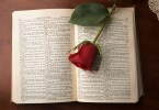 Romeo and Juliet open book, rose