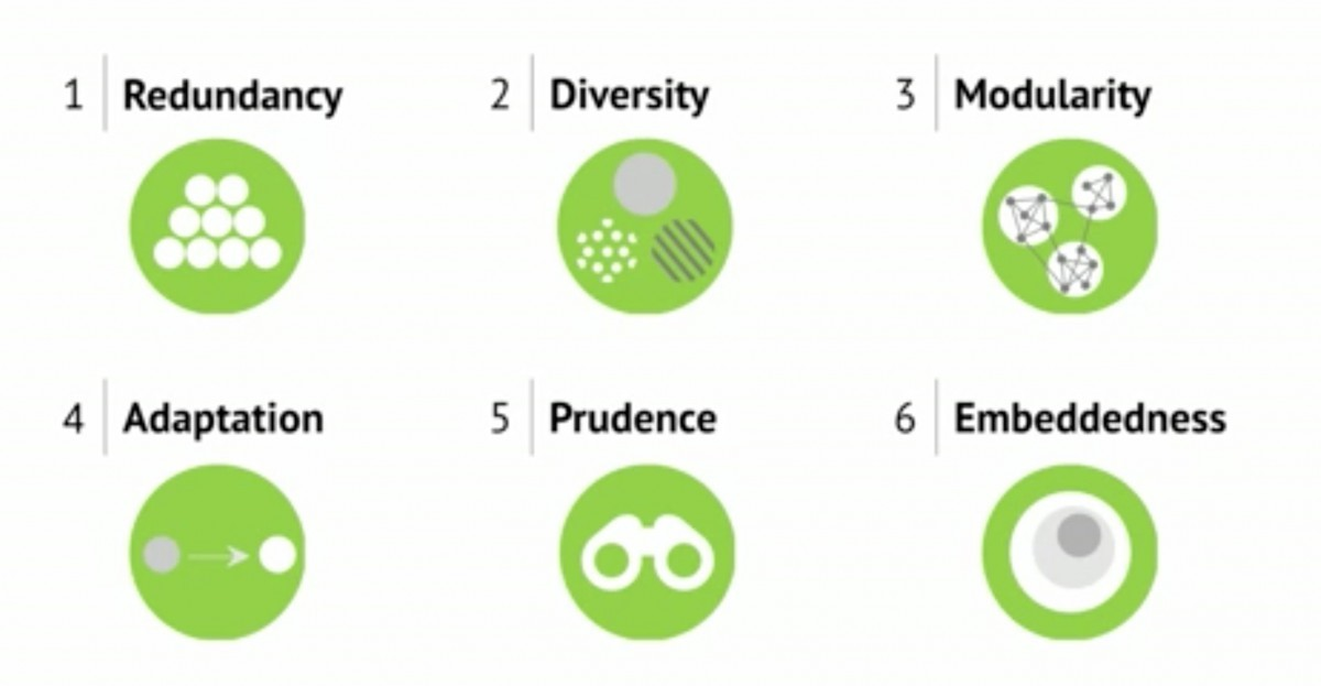 Martin Reeves - 6 principles