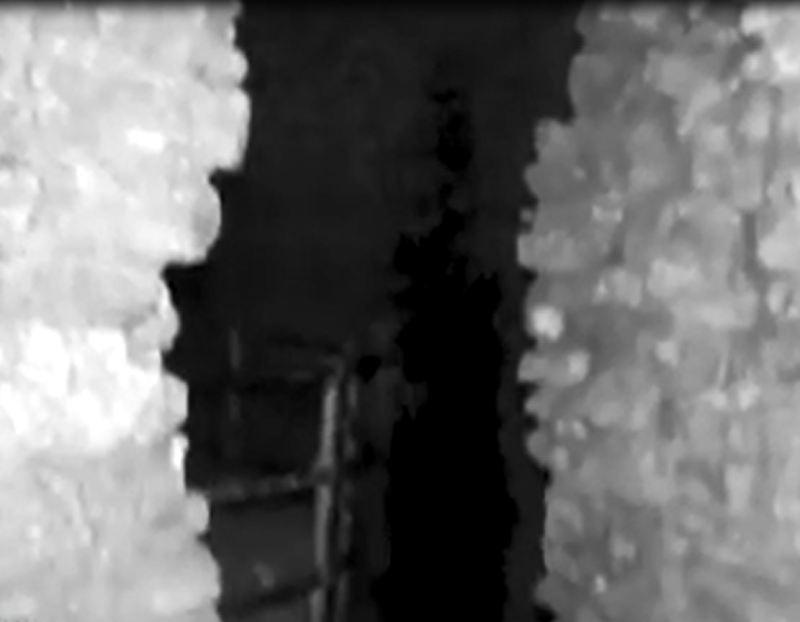 Stourbridge News: Une capture d'écran de la silhouette sombre prise à la caméra au château de Dudley le 15 octobre