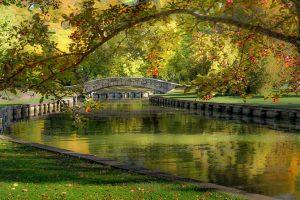 Doty Park, New York
