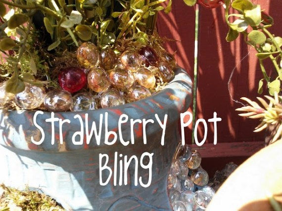 Strawberry-Pot-Bling-at-StowandTellU.com