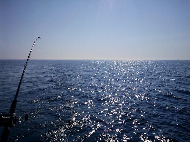 charter fishing - Lake Michigan - Stownadtellu