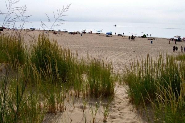 trails lead to the beach-Warren Dunes - StowandTellu