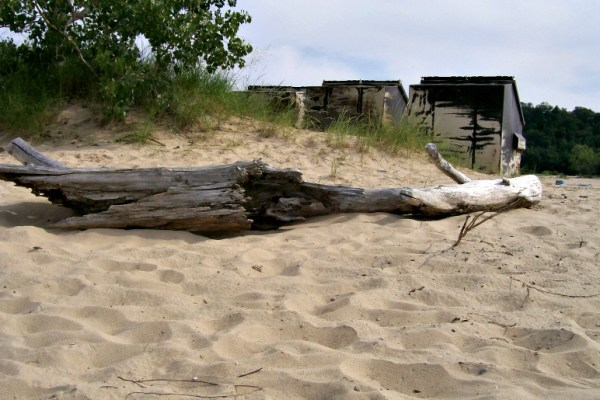 weathered wood-Warren Dunes-Michigan-StowandTellU
