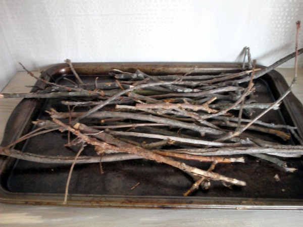 Collect twigs