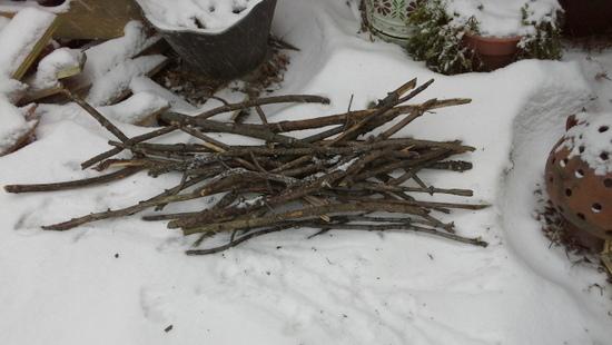 kindling-twigs