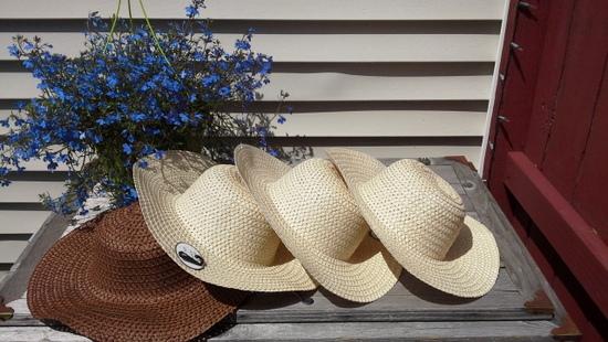 dollar-store-straw-hats