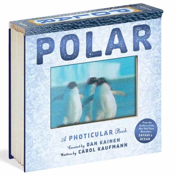 polar book for kids