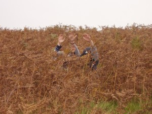 Photo: Hiding in the bracken at Bradgate Park
