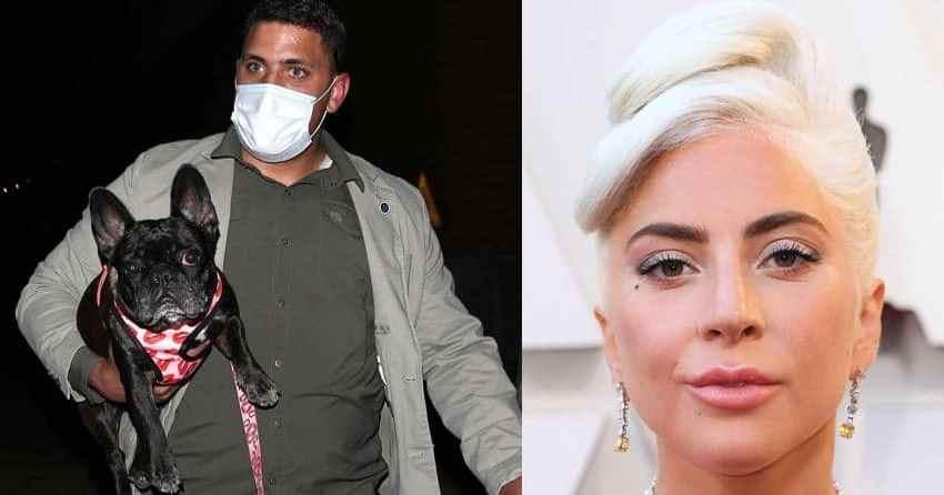 XOKKANTI: Jisparawlu 4 Tiri F'Sidru U Jaħarbu Bil-Klieb Ta' Lady Gaga