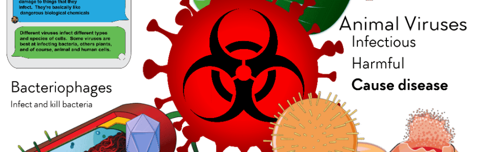 Coronavirus and Other Viruses- BETA