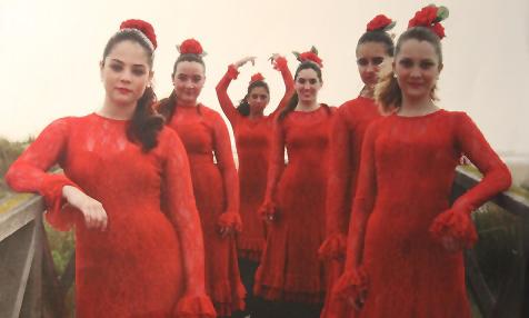 Flamenco El Palmar