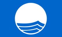 200px-Blue_Flag_Logo