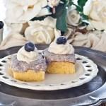 Blueberry Mousse Slice -gluten-free & low FODMAP