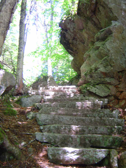 Glacial Park - Old Stone Stairway