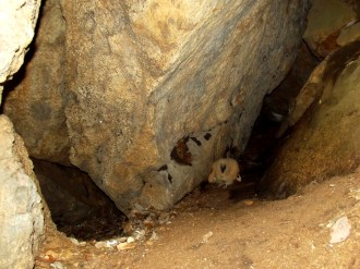 Two of the passages in cave 3