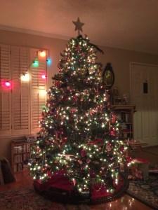 My big Christmas tree