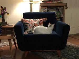 Joybird Hughes Chair with Bonus Leota