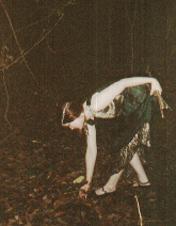 Holly Gathering Wood