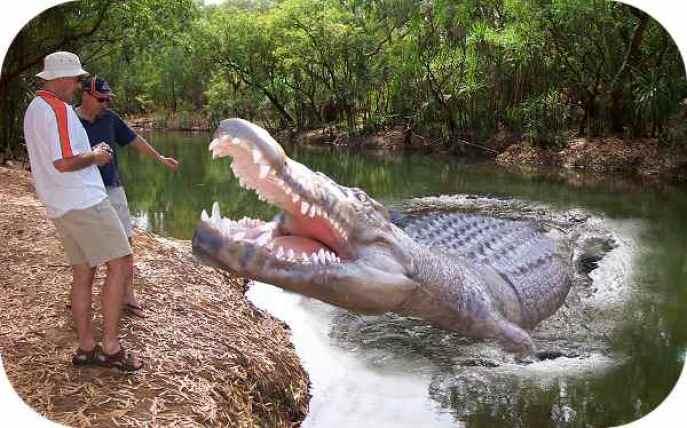 crocodile-top-10-dangerous