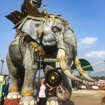 Golden_Tirangle_elephant