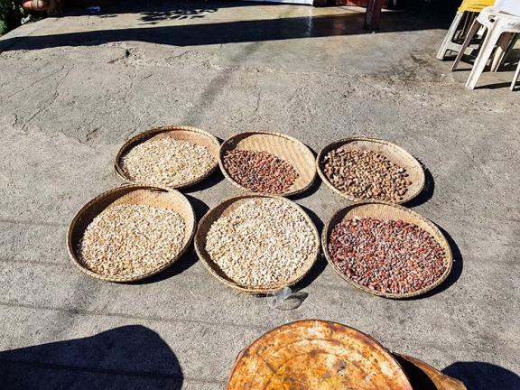 Prodaja oreščkov na ulici