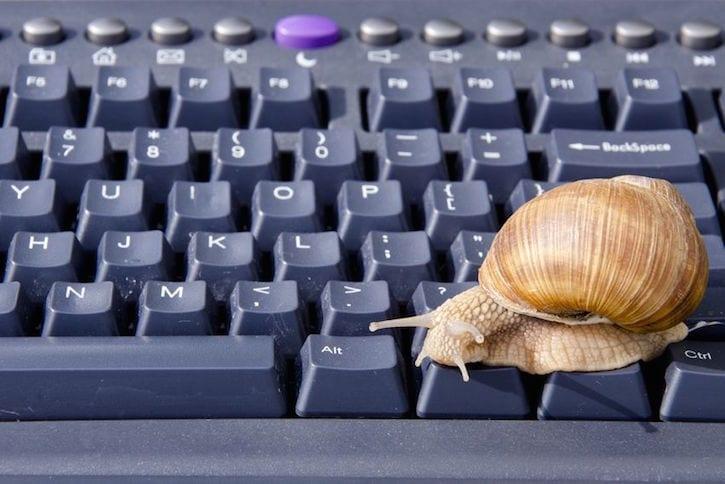 snail computer